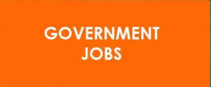 Government Job Results